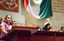 Ex autoridades podrán intervenir en el último ejercicio fiscal auditado:Vilma Martínez Cortés