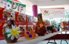 Promueve DIF de Santa Lucía del Camino vida digna para adultos mayores