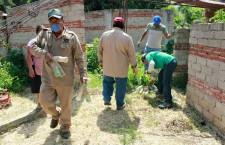 Refuerza ayuntamiento medidas para prevenir contagio de dengue y chikungunya