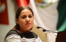 Propone diputada Natividad Díaz mejorar la calidad del trabajo legislativo