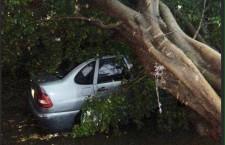 Consejo Municipal de Protección Civil, atiende a población  luego de la lluvia de este martes