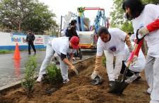 Municipio de Oaxaca promueve el cuidado del medio ambiente;  reforesta parque lineal de la capital