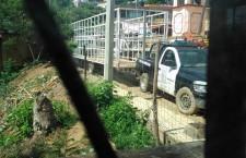 Agentes y representantes repudian acciones que atentan contra el desarrollo de Mazatlán Villa de Flores