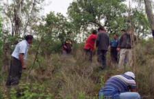 Realizan 2ª Campaña de Reforestación en Cerro del Fortín