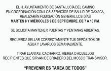 Realizará ayuntamiento de Santa Lucía del Camino fumigación contra los mosquitos
