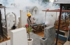 Municipio de Oaxaca y SSO implementan acciones de nebulización en los panteones de la capital