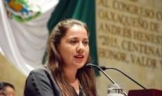 Urgente resolver problemas del sector apícola: Naty Díaz