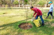 Reforesta Gobierno del Estado parques y espacios públicos