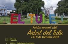Oaxaca celebra la majestuosidad del milenario Árbol del Tule