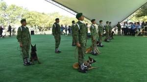 AMH-Exposición militar (4)