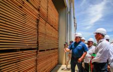 Refrenda AMH apoyo a la industria forestal sustentable de Oaxaca