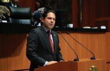 Exhorta Partido Verde al gobierno federal a dar continuidad a proyecto de energía eólica de Oaxaca