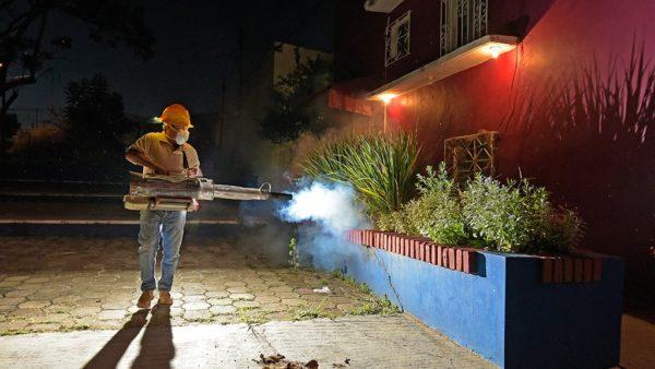 Ayuntamiento capitalino y SSO combaten dengue, zika y chikungunya en 118 colonias
