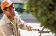 Don Enrique y sus figuras extraordinarias adornan Ciudad Administrativa