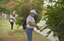 """Suspende Ayuntamiento de Oaxaca programa """"Labor Comunitaria"""" para salvaguardar salud de participantes"""