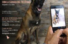 Ofrecerá Seculta curso de fotografía virtual a través de su cuenta de Instagram