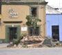 Concluye Ayuntamiento de Oaxaca retiro de árbol en calzada Madero, ante peligro de caída