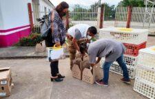 DIF Estatal Oaxaca, fortalece las Cocinas Comunitarias con la entrega de paquetes avícolas en la Cuenca: Christian Holm Rodríguez.