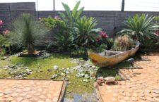 Vives Verde, un lugar que pasó de ser un basurero a un jardín de esculturas y bellezas botánicas