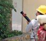 Certifica SSO espacios libres de larva del mosquito Aedes Aegypti