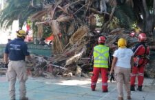 Coordina Ayuntamiento poda sanitaria de palmera ubicada en explanada de San Martín Mexicapam